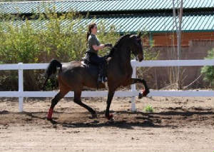 "KYLIE AND ""BILLY"" IN A LESSON"